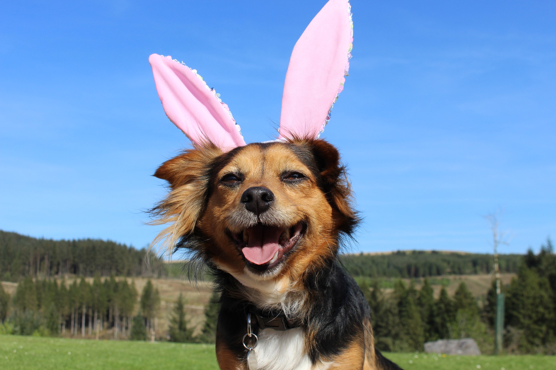 Easter Marketing Checklist