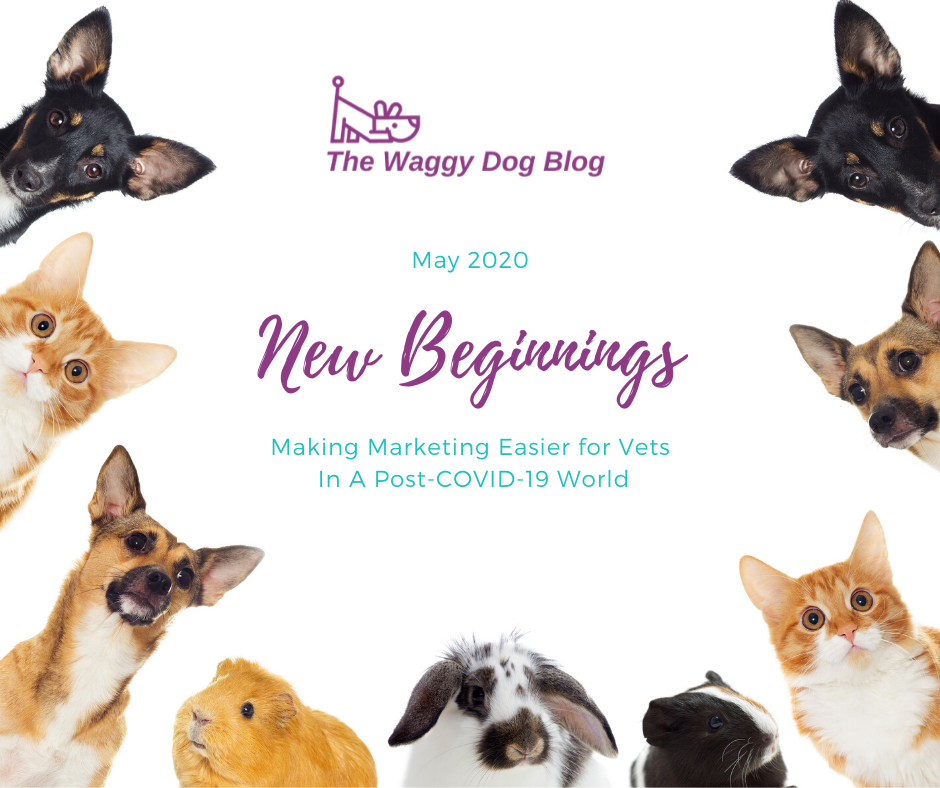 New Beginnings: Making Marketing Easier For Vets In A Post-COVID19 World
