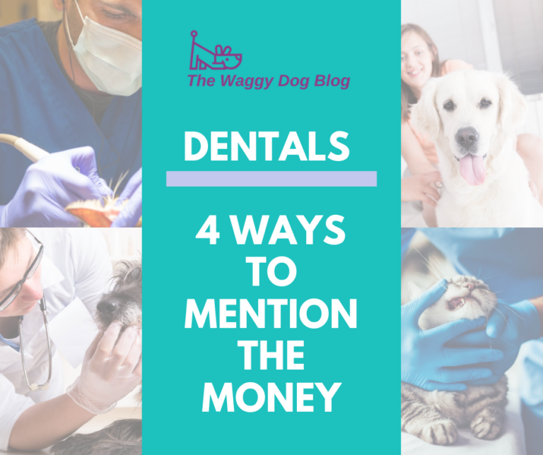 Dentals – 4 Ways To Mention The Money