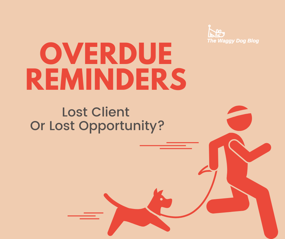 Overdue Reminders – Lost Client Or Lost Opportunity?